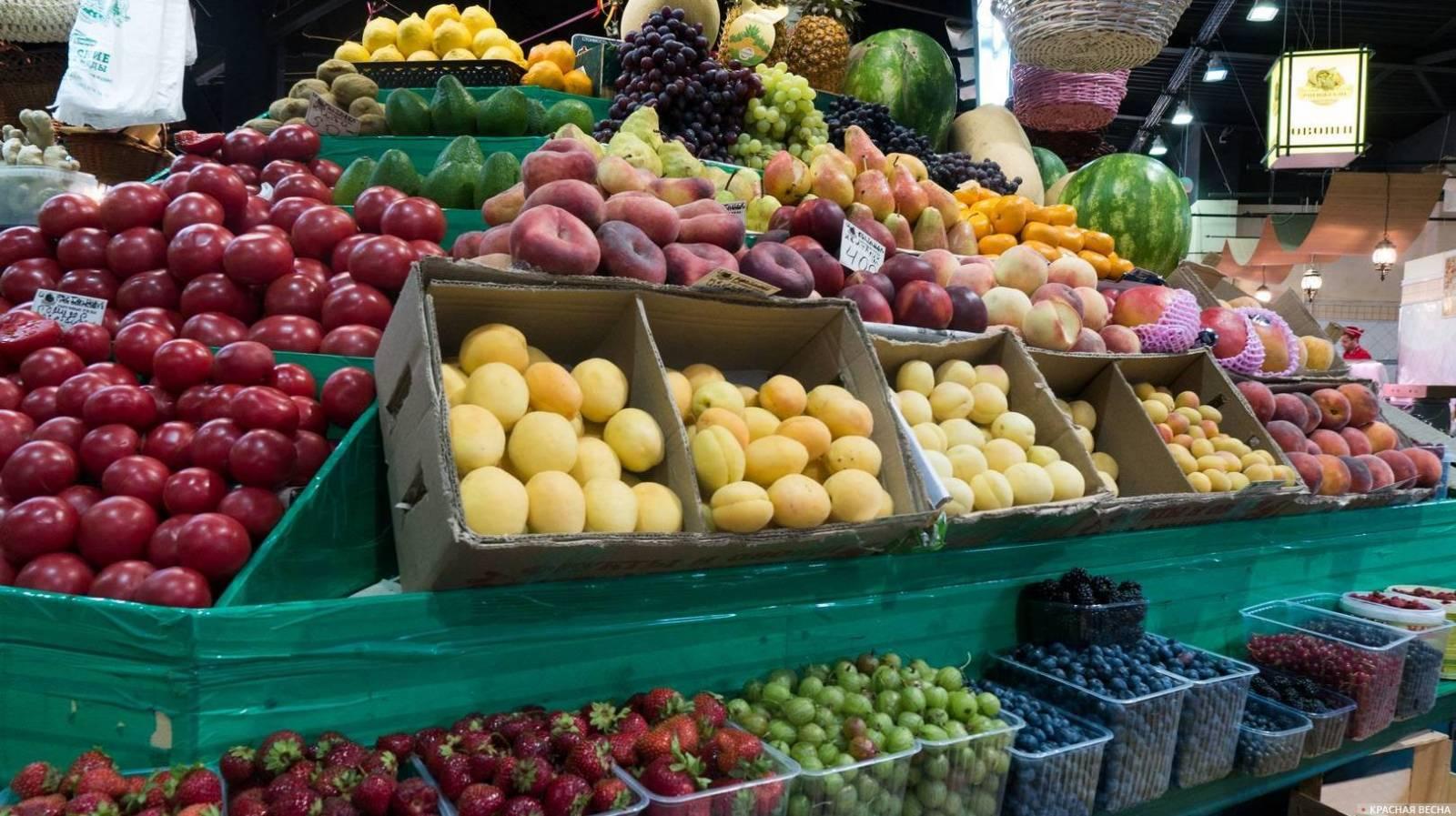 USAID подготовил справочник экспортеров плодоовощной продукции из стран ЦА