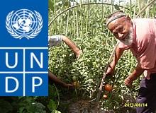 Консультирование в сельском хозяйстве