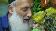 Мистер Птичкин: как пенсионер из Худжанда украшает свое одиночество