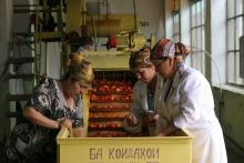 Должна ли женщина в Таджикистане работать? (ОПРОС)