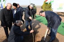 Эмомали Рахмон высадил новый яблоневый сад в Дангаре