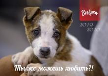 «Вечерка» выпустила календарь в защиту бездомных животных «Ты же можешь любить?!»