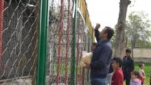 Быть или не быть Душанбинскому зоопарку? Таджикистанцы отвечают