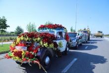 Как узбекские флористы украсили Наманган 5 миллионами цветов