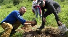 Как волонтеры возрождают Чимганский лес