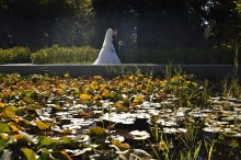 В кувшинках и свадебных платьях: Ботанический сад Душанбе справляет день рождения