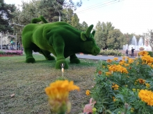 Слоны, медведи, чайники, олени…Как власти украшают Душанбе