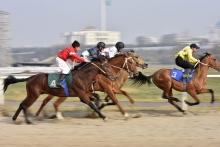 В Душанбе прошли конные скачки в честь Дня президента
