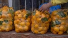 Почему лимоны в Таджикистане подешевели?