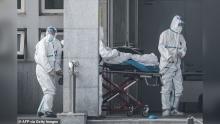 ВОЗ не стал объявлять чрезвычайную ситуациую международного значения из-за вспышки коронавируса в Китае
