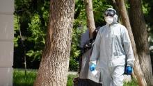 Коронавирус в Таджикистане: за выходные число людей с COVID-19 увеличилось на 87 человек
