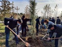 Завершился «Месяц действий по развитию зеленого климата» в Таджикистане