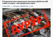Дурӯғ | Қатли оммавии 200 сагу гурба дар Тоҷикистон