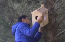 Челлендж от Asia-Plus: Подари птице домик