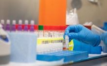 Эпидемиолог рассказал о выявлении в России новых версий коронавируса