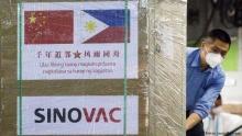 ВОЗ одобрила экстренное использование китайской вакцины Sinovac от коронавируса