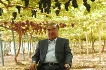 Турсунзаде изменился до неузнаваемости: как подготовили город к визиту президента