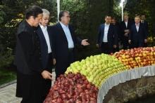 Фруктовый рай. Эмомали Рахмон организовал вечер дружбы для президентов ШОС и ОДКБ
